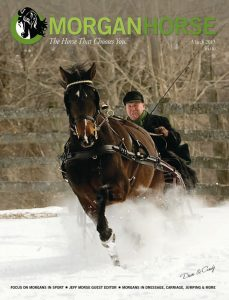 Jeff Morse on The Morgan Horse cover