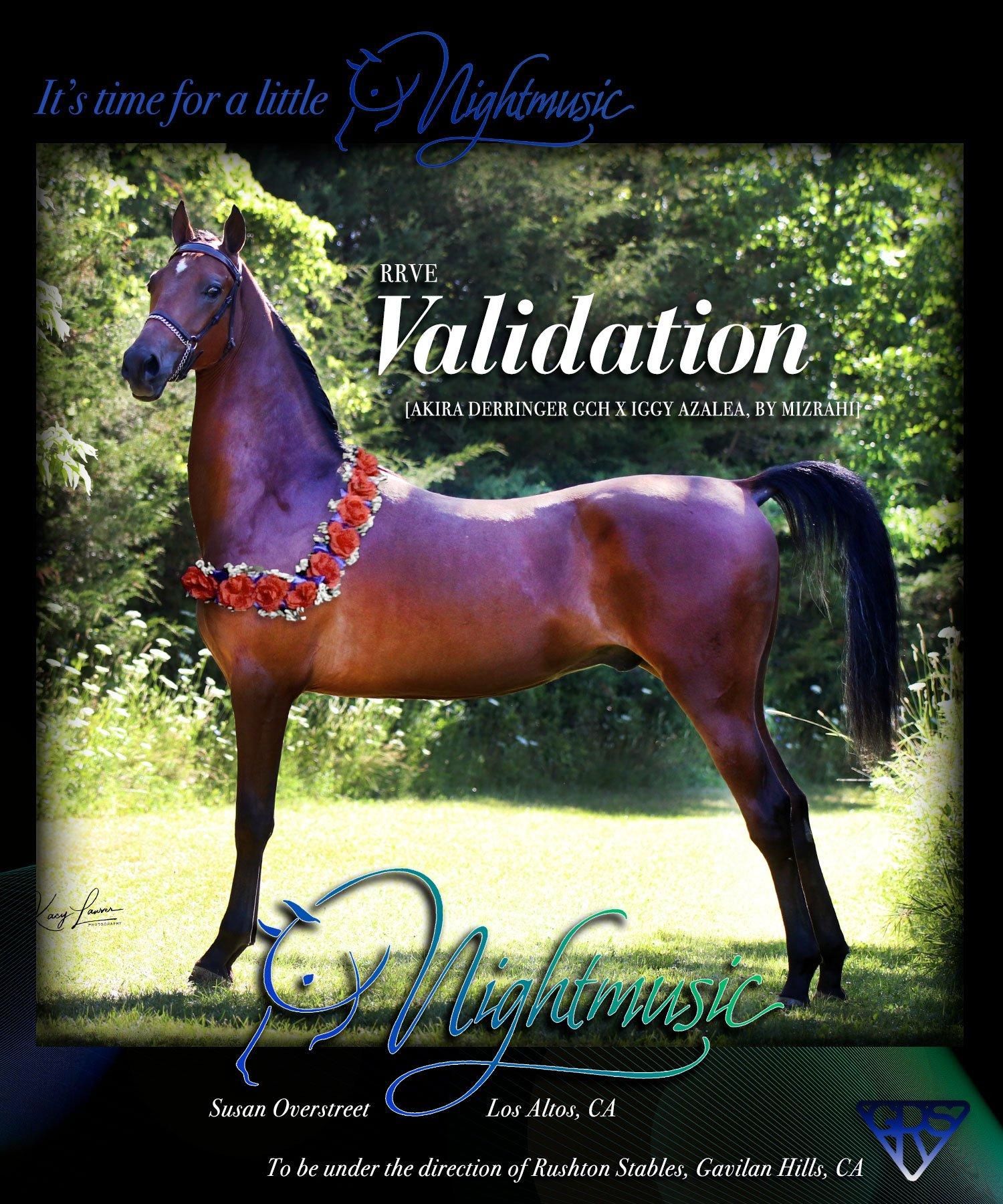 RRVE-Validation-Sold-Dec2020-4