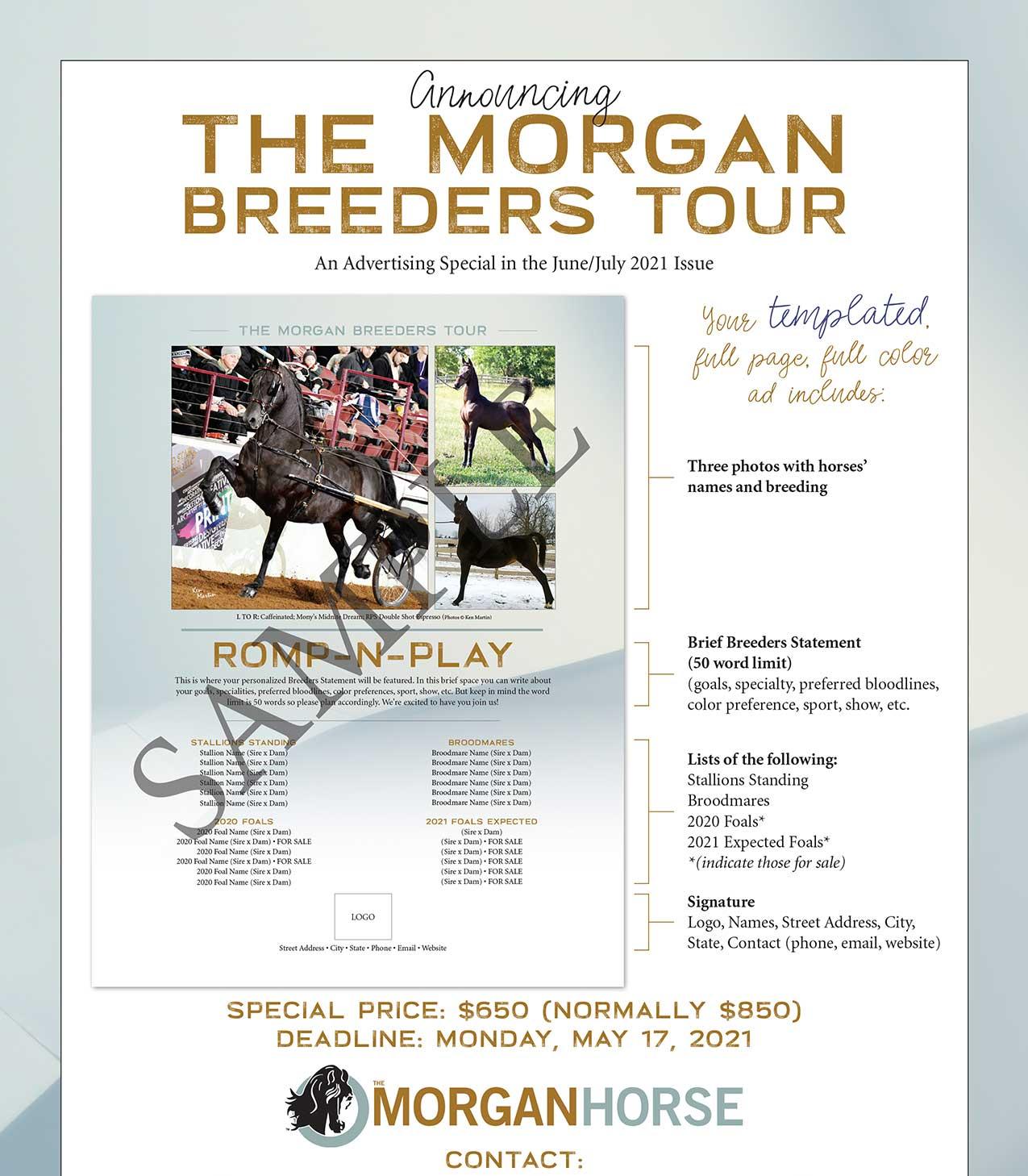 The Morgan Horse May 2021 Special