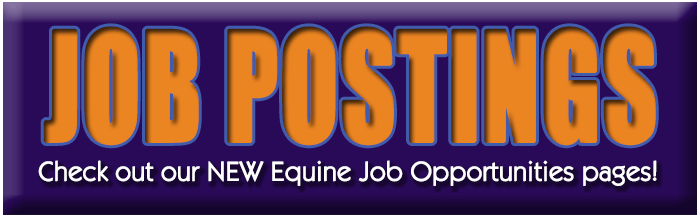 Equine Job Opportunities