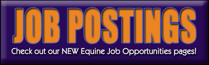 Equine Job Opportunities